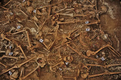 Mass grave of the Spanish Civil War (1936) Stock Images