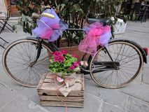 Mass party in Massa, bicycle decorated for parties stock image