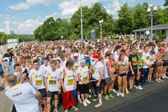 Mass race before the start Royalty Free Stock Images