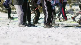 Mass ski race. Cross-country skiing race. The legs of skiers. stock video
