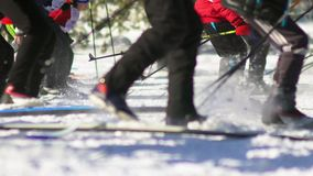 Mass ski race. Cross-country skiing race. The legs of skiers. stock video footage