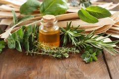 Massa, azeite e ervas Wholegrain do artesão Fotografia de Stock