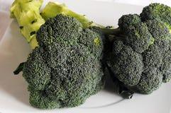 Massa com brócolis e queijo imagem de stock