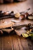 Massa cruda del cacao con le nocciole, immagine stock libera da diritti