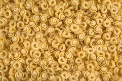 Massa italiana Uncooked imagens de stock
