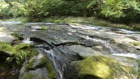 Massa van de rivier de stromende rots stock videobeelden