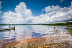 Massabesic湖清楚的水,赤褐色的,新罕布什尔 免版税库存图片