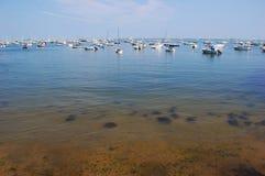 massachusetts plymouth havskust royaltyfri foto