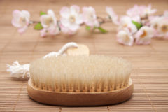 Massage brush with bristles Stock Images
