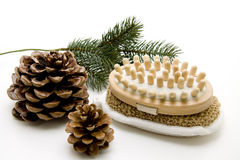 Massage brush with fir cones. Massage brush and sponge with fir cones stock photography