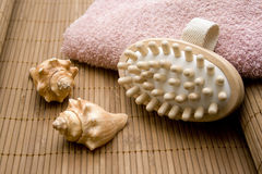 Massage brush and mussel Stock Photos