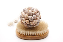 Massage brush with sea shell Stock Photo