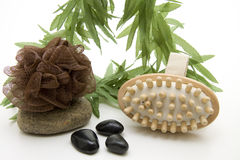 Massage brush with sponge. And stone Stock Photos