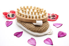 Massage brush on sponge with heart blossoms Stock Images