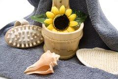 Massage brush and sunflower Stock Photography
