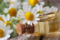 Massage camomile oil in the bottle macro on wooden Stock Image