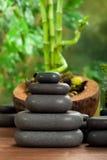 Massage de station thermale - pierres noires Photos libres de droits