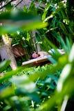 Massage draußen Stockfotografie