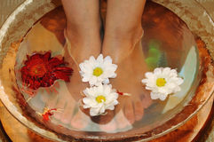 Massage of feet royalty free stock photography