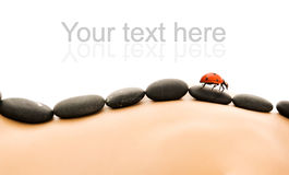 Massage with hot stones Royalty Free Stock Photography