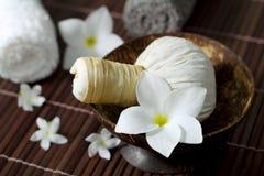 Massage och brunnsort. Arkivbilder