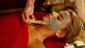 Massage- och lerakroppmaskering i brunnsortsalong Närbild av händer av en kosmetolog stock video
