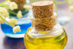 Massage oil. In glas flacon close up royalty free stock images