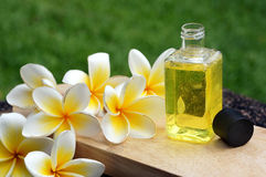 Massage oil. For tropical spa concept with plumeria flowers Royalty Free Stock Photography
