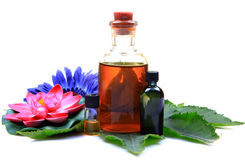 Massage oil bottles. With flowers and leaf isolated on white background royalty free stock images