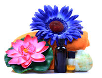 Massage oil bottles. With flowers isolated on white background stock photo