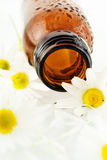 Massage oil from chamomile. Flower royalty free stock photography