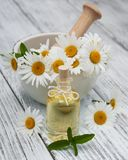 Massage oil and chamomile. On a old wooden background royalty free stock images