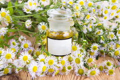 Massage oil in a glass bottle with camomile flowers Royalty Free Stock Image