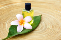 Massage oil for tropical spa concept Stock Image