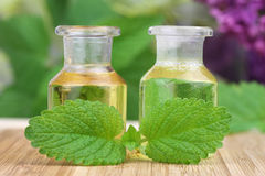 Massage oils and lemon balm Stock Photos