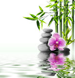 Massage with orchid and bamboo. Purple orchid flower end bamboo on water royalty free stock photo