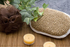 Massage sponge with candle. And green plant royalty free stock photos