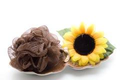 Massage sponge with sunflower Stock Photos