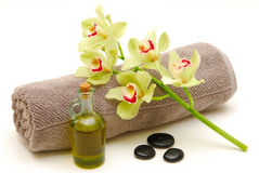Massage still life isolated Stock Images