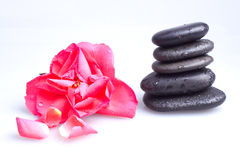 Massage stone with rose Stock Images