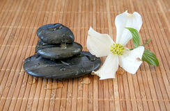 Massage Stones Royalty Free Stock Photos