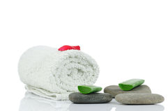 Massage stones, aloe and petals Royalty Free Stock Photos
