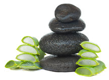 Massage stones with aloe vera Stock Image