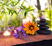 Massage stones with bamboo background with daisies and wisteria Royalty Free Stock Images