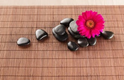 Massage stones with flower on mat Royalty Free Stock Photography