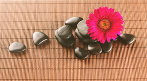 Massage stones with flower on mat Royalty Free Stock Image