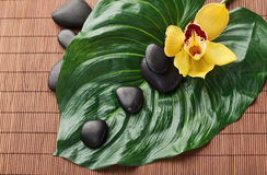Massage stones with flowers on mat Stock Photography