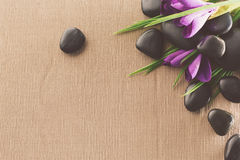 Massage stones with flowers on mat Royalty Free Stock Photo