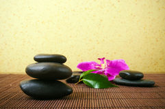 Massage stones and orchid Stock Images
