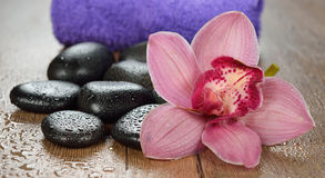 Massage stones and orchid Royalty Free Stock Photography